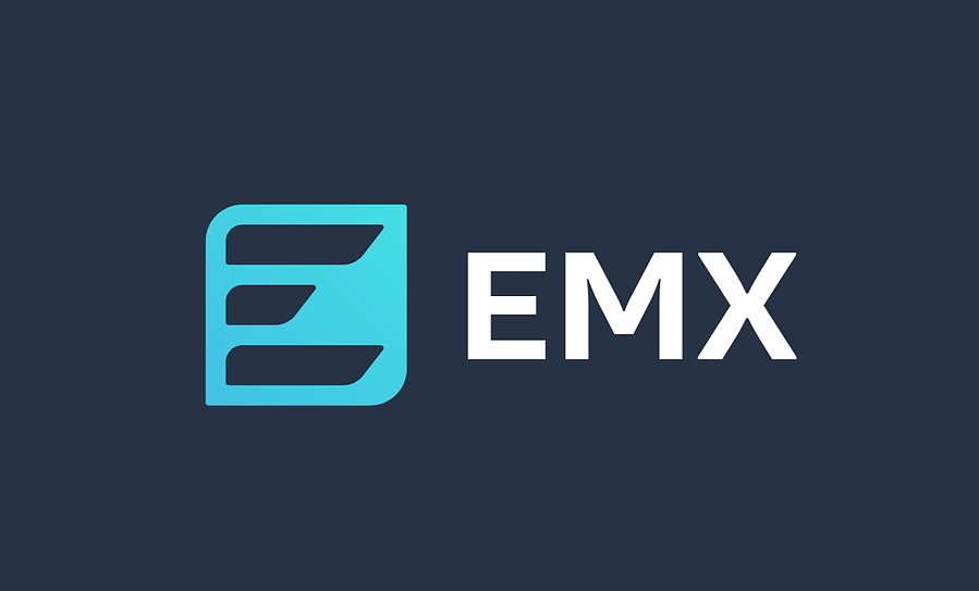 The winning EMX logo